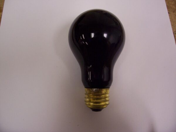 60A-BL Incandescent Black Light