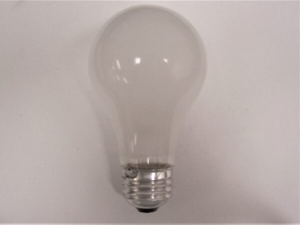 100ARS Rough Service Incandescent Lamp