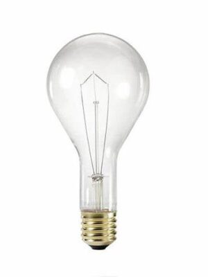 300CL-120V Incandescent Lamp