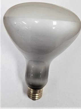 100R40FL Incandescent Flood Light
