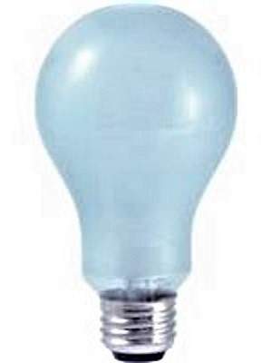 100A21CL-NEO/C Incandescent Lamp Neodymium