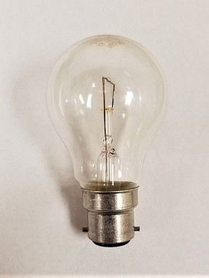 A100B22-50CL European Incandescent Lamp